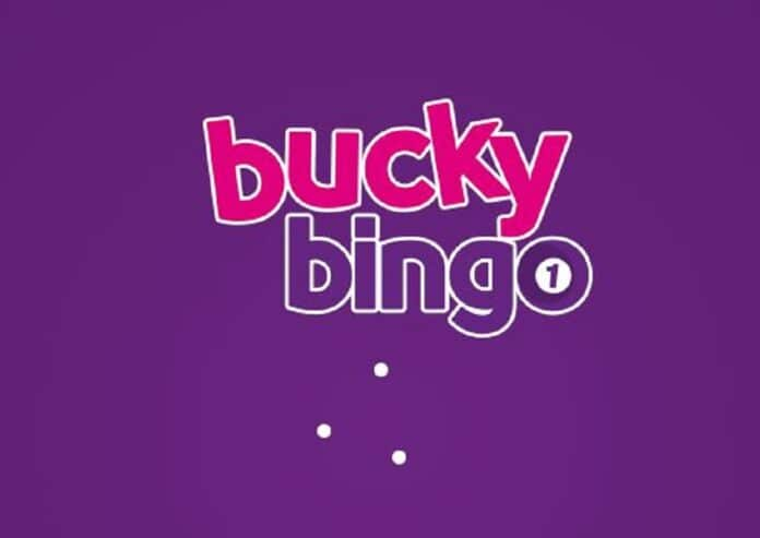 Everything You Need To Know About Bucky Bingo
